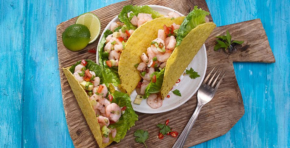 Tiefseeshrimps in der Tacoshell